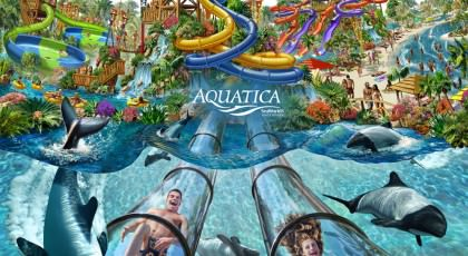 Aquatica_orlando_beach_waterpark_american_vacation_living-420x230 - disney