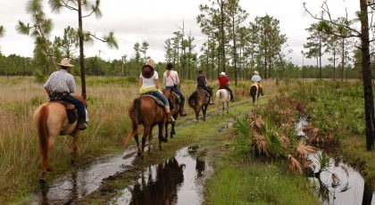 Horse_Back_Riding_orlando_attractions_american_vacation_living-420x230 - disney