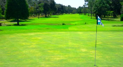 Rio_Pinar_Golf_Club_american_golf_tours-420x230 - disney